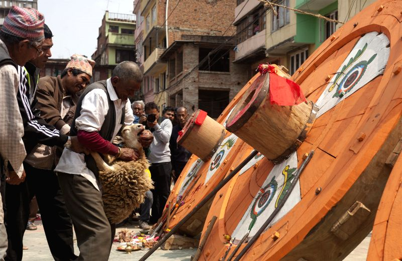Nepalese Hindu priests offer a sheep to the newly built wheel of the Rato Machhindranath chariot in Lalitpur, Nepal, March 26. The four wheels of the Rato ...