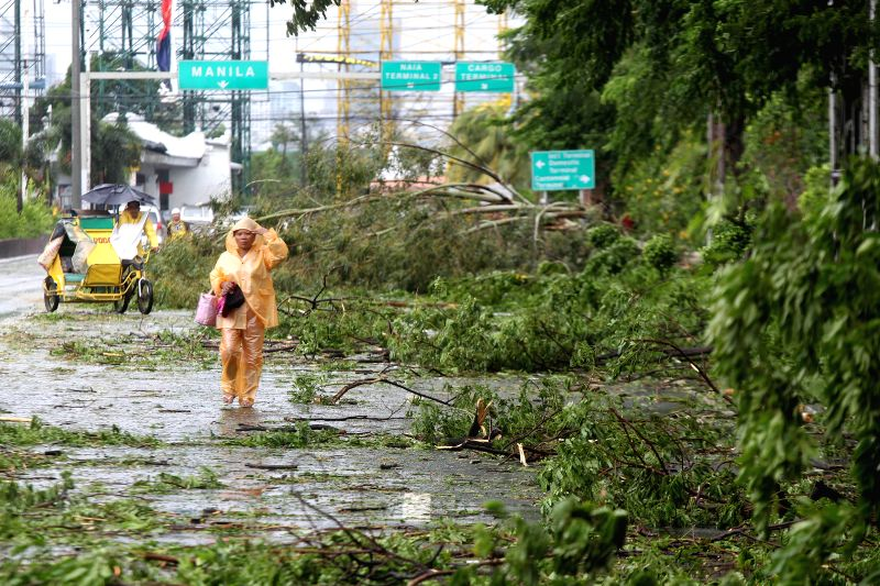 A woman walks past trees uprooted by typhoon Rammasun in Las Pinas City, the Philippines, July 16, 2014. At least 5 people were killed following the ...