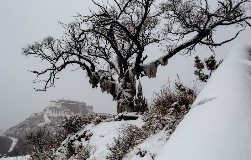 Photo taken on Jan. 8, 2014 shows the Potala Palace after a snowfall in Lhasa, capital of southwest China's Tibet Autonomous Region. The city saw this year's first ...