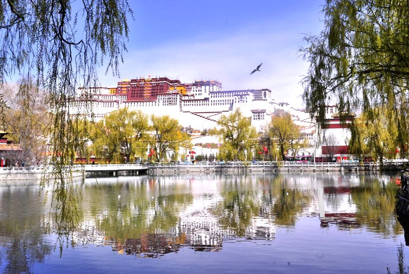 Photo taken on March 30, 2015 shows the spring scenery of the Potala Palace in Lhasa, capital of southwest China's Tibet Autonomous Region, March 30, 2015. ...