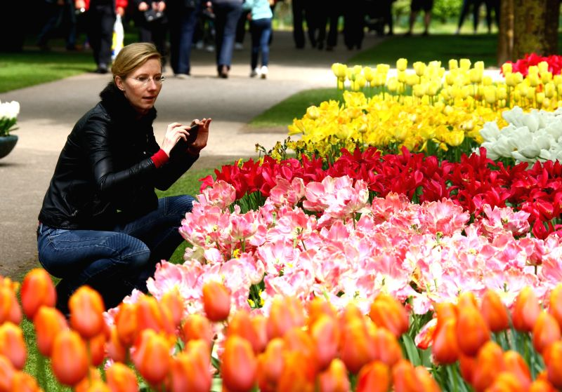 People visit Keukenhof Garden in Lisse, Netherlands, May 1, 2014. Keukenhof, also known as Garden of Europe, is the world's most famous Tulip garden, located in Lisse, .