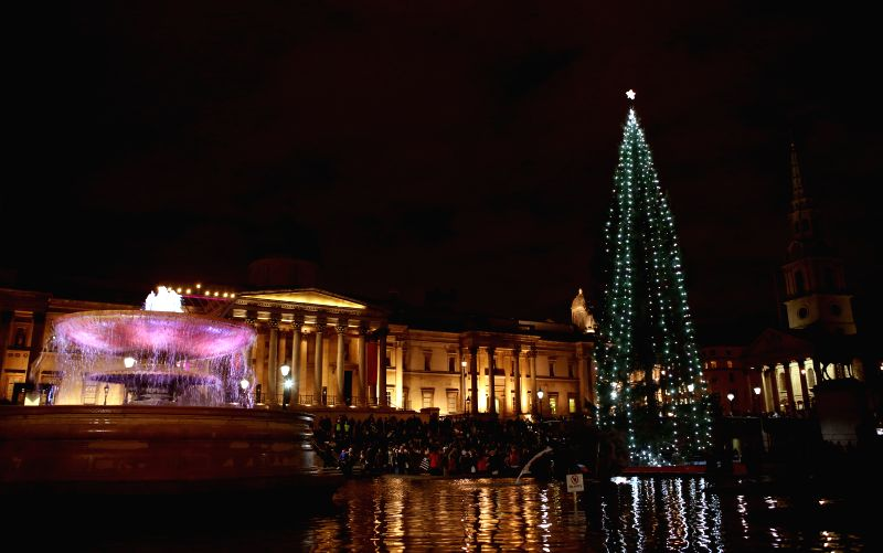 Photo taken on Dec. 23, 2014 shows the Christmas tree at the Trafalgar Square in London, Britain. (Xinhua/Han Yan)
