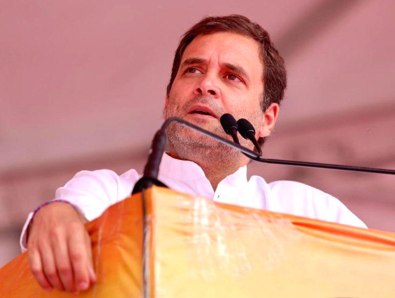 Ludhiana: Congress President Rahul Gandhi addresses a public rally in Ludhiana, Punjab, on May 13, 2019.