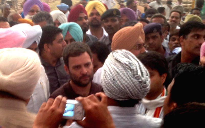 Congress Vice-President Rahul Gandhi interacts with the farmers at Sirhind Dana Mandi, Gobindgarh near Ludhiana of Punjab on April 28, 2015.