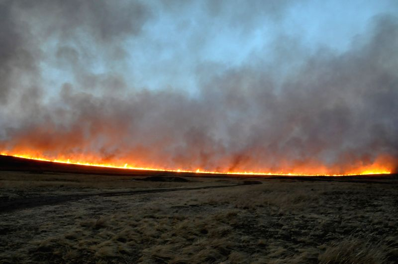 Fire approaches the border of China and Russia in Manzhouli City, north China's Inner Mongolia Autonomous Region, April 22, 2015. A fire stretching 40 kilometers ...