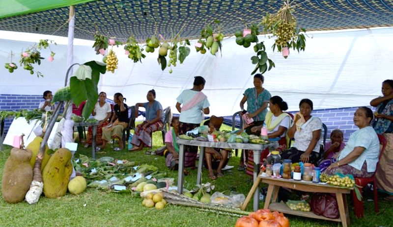 Members of a Self Help Group (SHG) ata stall set-up by them on the Day -1 of Indigenous Fruit & Vegetable Festival at Ampati in Garo Hills of Meghalaya on July 3, 2014.