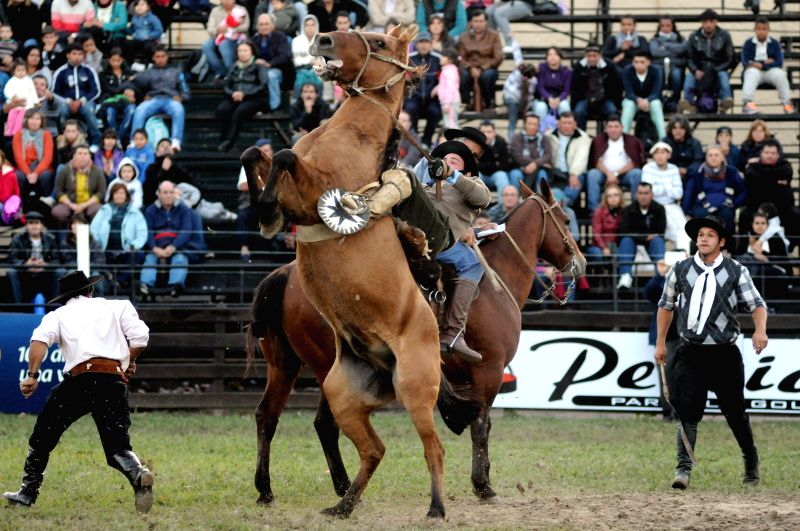 A rider competes during the 89th Prado's Creole Week, at Rural del Prado rodeo, in Montevideo, capital of Uruguay, on April 14, 2014. Some 200,000 people ...