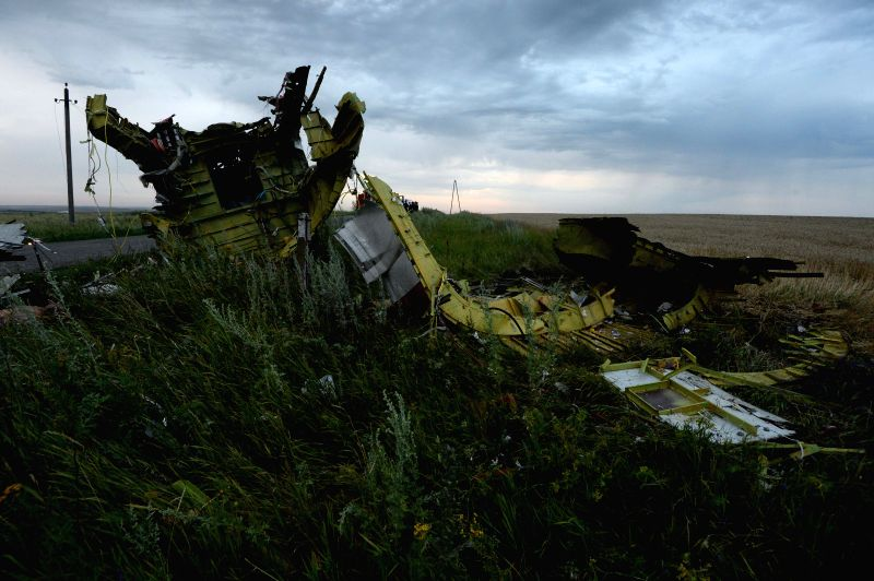 Photo taken on July 17, 2014 shows the debris at the crash site of a passenger plane near the village of Grabovo, Ukraine. A Malaysian flight crashed Thursday in ...