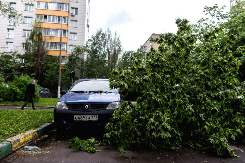 MOSCOW, May 29, 2017 - The fallen branches of trees are seen by a car after a storm in Moscow, Russia, on May 29, 2017. A sudden storm killed at least 11 people in Moscow Monday afternoon and forced ...
