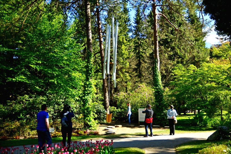 MOZIRJE (SLOVENIA), May 2, 2017 People watch the largest tuned-in wind bells in Europe exhibited at Mozirski Gaj botanical park in Mozirje, Slovenia, on May 2, 2017. The wind bells, made ...