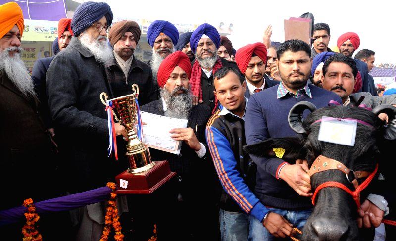 Punjab Deputy Chief Minister Sukhbir Singh Badal addresses during the National Livestock Championship and Livestock Expo-2015 in Muktsar, Punjab on Jan 12, 2015. - Sukhbir Singh Badal