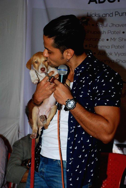 Actor Kunal Khemu at Pet Adoption Camp in Mumbai, on November 23, 2014.