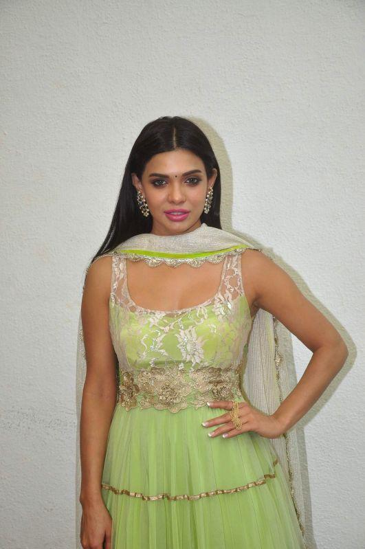 Actress Sara Loren during film Barkhaa trailer launch in Mumbai on March 5, 2015. - Sara Loren