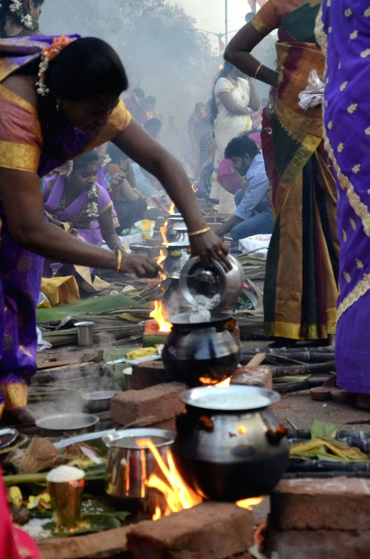 Women celebrate `Pongal` at Dharavi in Mumbai on Jan.14, 2015.