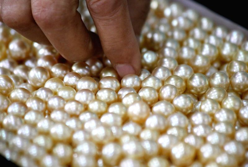 A merchant selects the pearl during the 51st annual Myanmar Gems Emporium at Maniyadana Emporium Hall in Nay Pyi Taw, Myanmar, June 24, 2014. The 13-day event ..