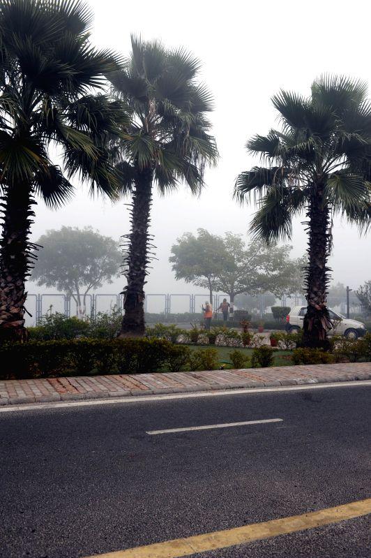 A foggy morning in New Delhi on Dec 22, 2014.