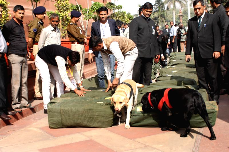 A sniffer dog inspects the documents pertaining to Budget 2015-16 for explosives before they are taken inside the Parliament in New Delhi on Feb 28, 2015.