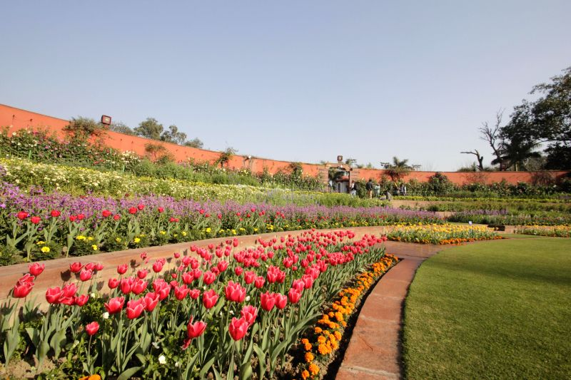 A view of the Mughal Garden in Rashtrapati Bhawan in New Delhi, on Feb 13, 2015.