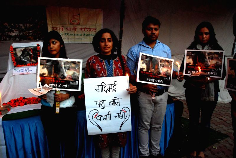 Animal rights activists stage a demonstration against animal sacrifices in New Delhi on Dec 5, 2014.