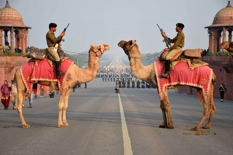 BSF's camel contingent during rehearsals for the beating retreat ceremony at Raisina Hills in New Delhi, on Jan 19, 2015.