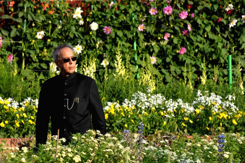 President Pranab Kumar Mukherjee at opening of Mughal Garden at Rashtrapati Bhawan in New Delhi, on Feb 13, 2015. - Pranab Kumar Mukherjee