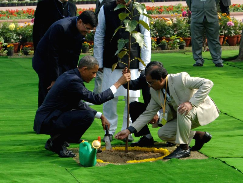 US President Barack Obama plants a sapling at the Rajghat complex in New Delhi, on Jan 25, 2015.