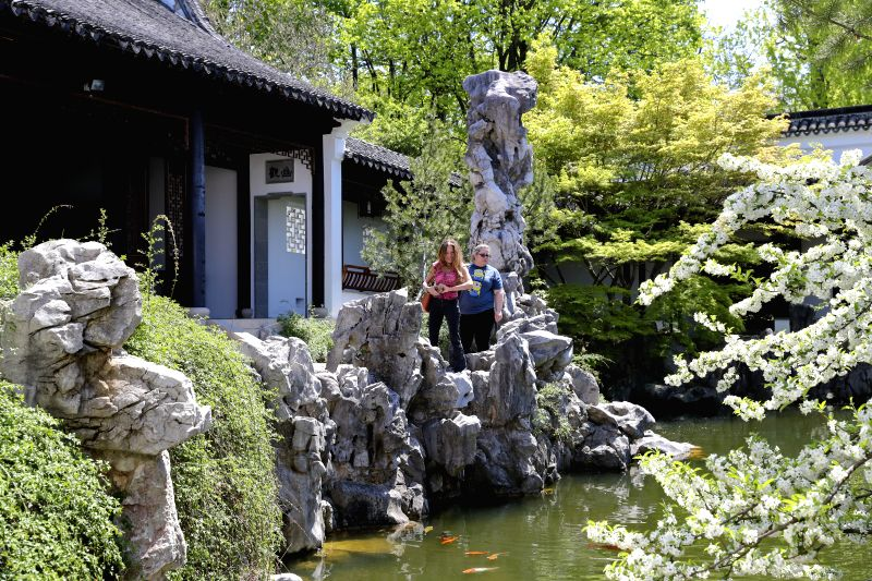 NEW YORK, May 1, 2017 - Visitors tour the Chinese Scholar's Garden at the Snug Harbor on Staten Island, New York, the United States, on April 28, 2017. The New York Chinese Scholar's Garden, or ...