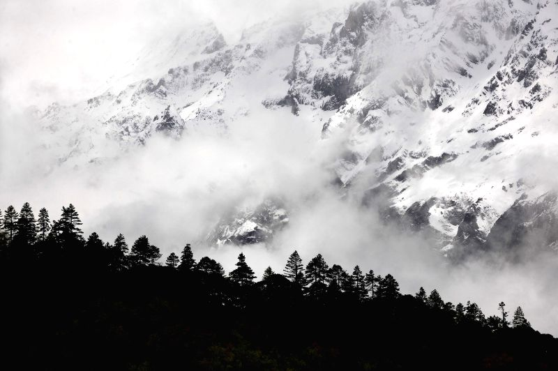 Forests are enveloped in clouds in Nyingchi Prefecture, southwest China's Tibet Autonomous Region, May 16, 2014.