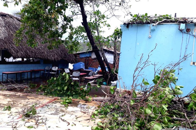 "OAXACA, June 4, 2017 - Tree branches lay on the yard of a school affected by tropical storm ""Beatriz"", in the state of Oaxaca, Mexico, on June 3, 2017. Tropical storm Beatriz left at least ..."