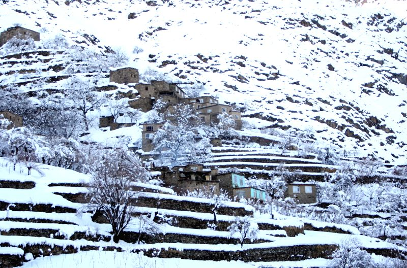 Houses are covered with snow in Panjshir province, east Afghanistan, on Feb. 25, 2015. The death toll has risen to more than 120 while several of others still ...