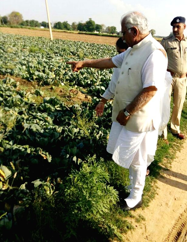 Haryana Chief Minister Manohar Lal Khattar takes stock of damages caused to crops in the recent hailstorms at Pataudi in Haryana on April 6, 2015.