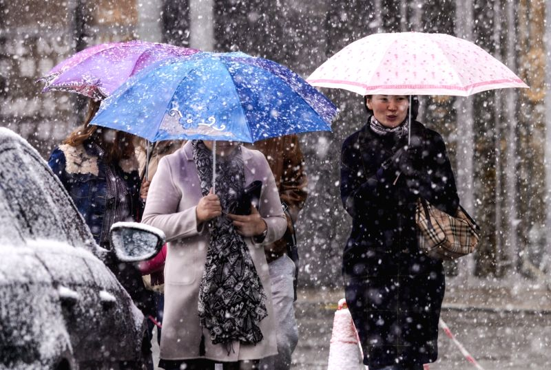 Pedestrians walk against the snow in Urumqi, capital city of northwest China's Xinjiang Uygur Autonomous Region, Nov. 2, 2015. The city witnessed snowfall on Monday ...