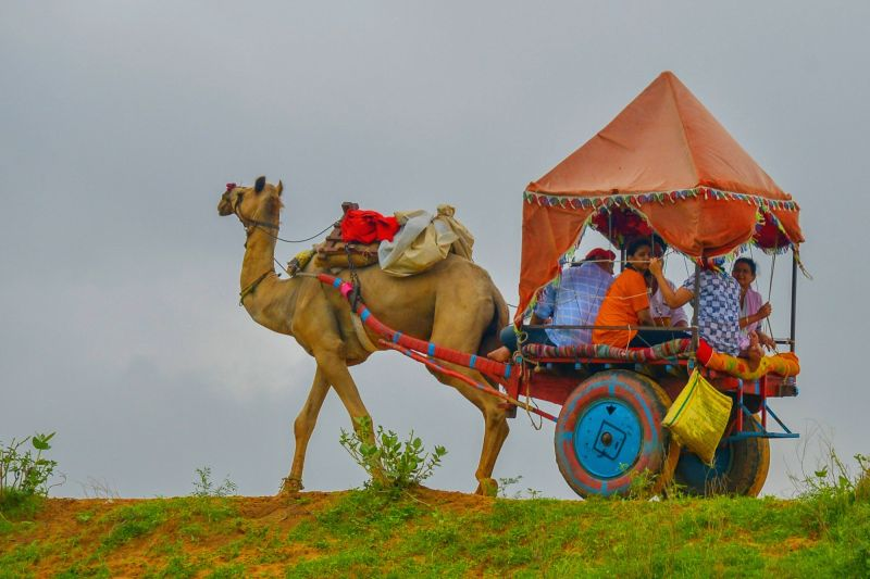 People enjoy camel cart ride on a cloudy day, in Pushkar on July 23, 2018.