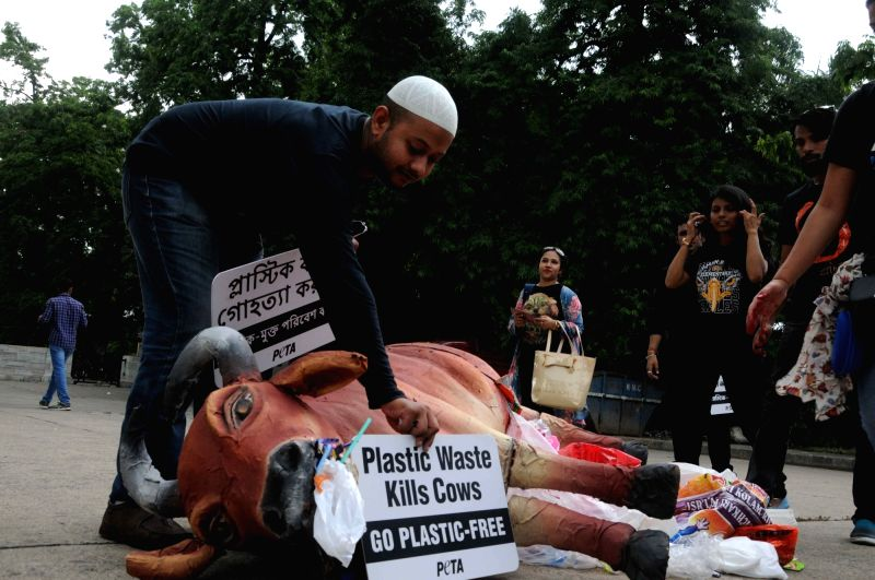 People for the Ethical Treatment of Animals (PETA) activists  use a dummy cow carcass as they participate in an awareness rally on the ill effects of plastic usage on environment, organised ...
