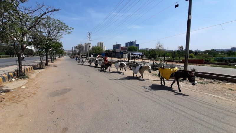 People forced to migrate on foot, rickshaws amid 21-day COVID-19 lockdown.