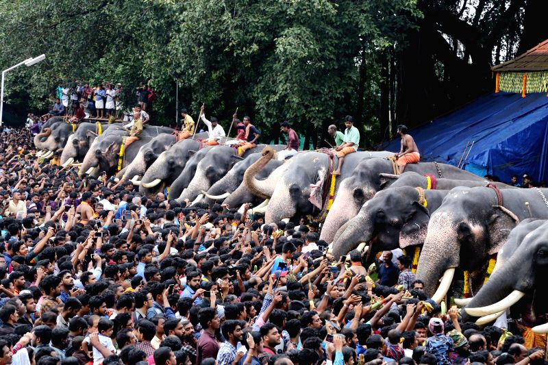 People gather to feed elephants during the annual Anayoottu ritual as part of ceremonies associated with the Malayalam month of Karkidakomat at Sree Vadakkunnathan Temple, in Kerala's ...