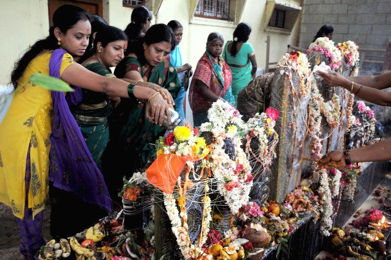 People perform rituals on Nagara Panchami in Bangalore on August 1, 2014.