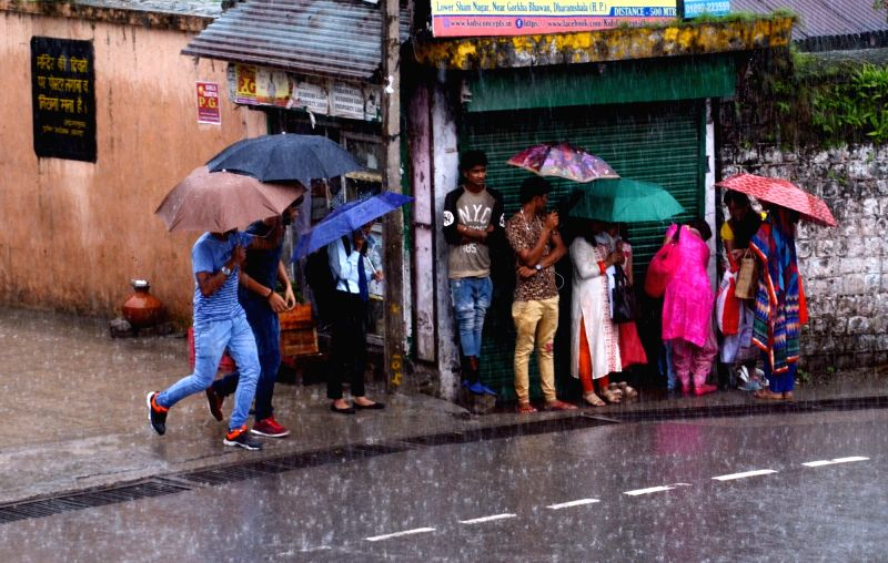People shield themselves with umbrellas during rains, in Dharamshala on July 14, 2018.