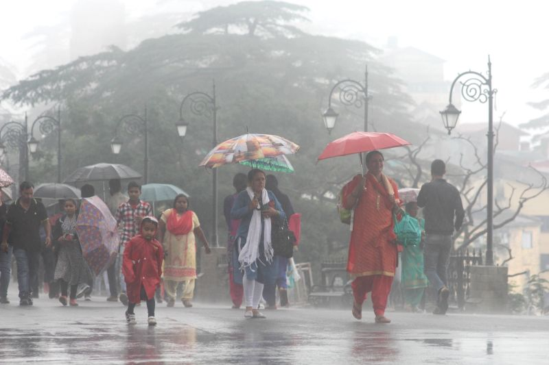 People use umbrellas to shield themselves as rains lash Shimla on July 23, 2018.