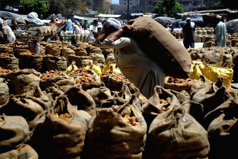 PESHAWAR, May 1, 2017 - A Pakistani laborer carries a sack of vegetable at a fruit and vegetable market on the International Workers' Day in northwest Pakistan's Peshawar, on May 1, 2017.