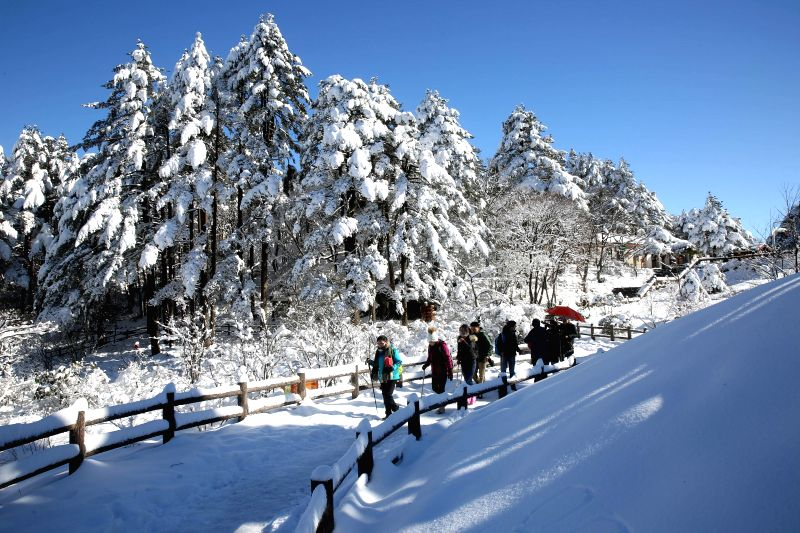 Photo taken on Dec. 6, 2015 shows the snow scenery of Huangshan Mountain, east China's Anhui Province. (Xinhua/Wu Sunmin)