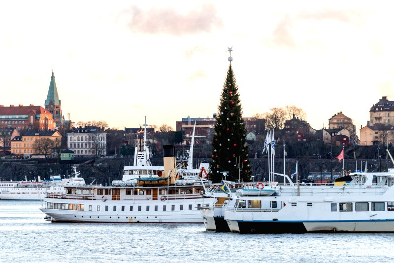 Photo taken on Nov. 30, 2015 shows a high Christmas tree in downtown Stockholm, capital of Sweden.
