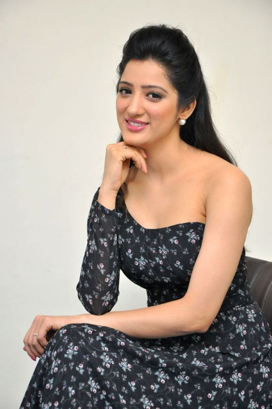 Press meet of actress Richa Panai. - Richa Panai