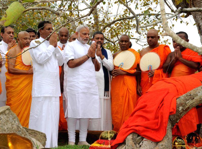 Prime Minister Narendra Modi during his visit to the  Sri Maha Bodhi Tree in Anuradhapura, Sri Lanka  on March 14, 2015. - Narendra Modi