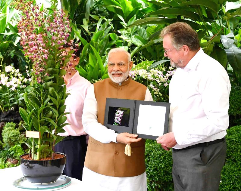 Prime Minister Narendra Modi visits the National Orchid Garden in Singapore on June 2, 2018. - Narendra Modi