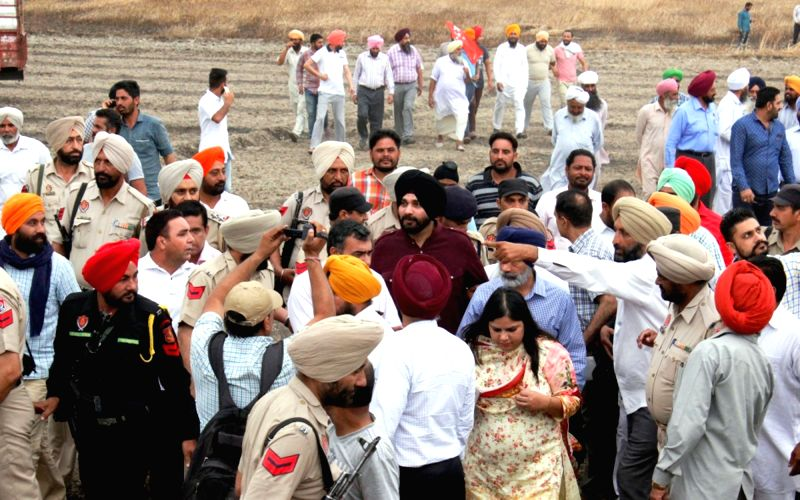 Punjab Minister Navjot Singh Sidhu visits fields where standing wheat crop were destroyed in a fire near Amritsar on April 23, 2017. - Navjot Singh Sidhu