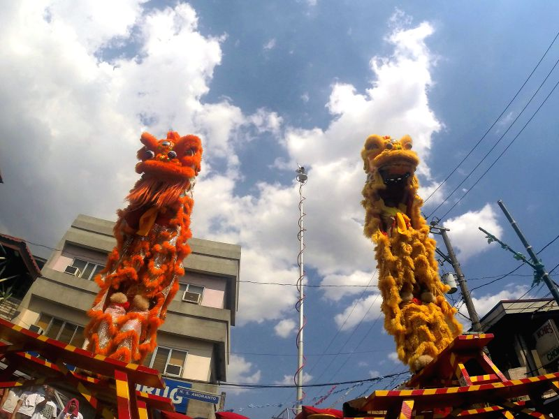 Lion dancers perform during the annual Lechon Festival in Quezon City, the Philippines, May 18, 2014. The Lechon Festival is celebrated by parading roasted pigs .