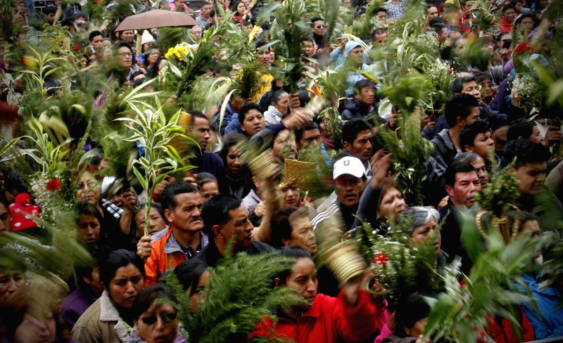 Devotees hold bouquets made with palms to celebrate the Palm Sunday, in Quito city, capital of Ecuador, on March 29, 2015. Palm Sunday is a festivity celebrated ...