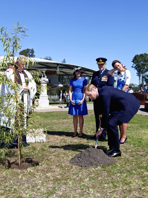 British Prince William plants a Queensland native ??Plunkett Mallee?? tree at the RAAF Base Amberley, near Brisbane, Australia, April 19, 2014. Prince ..