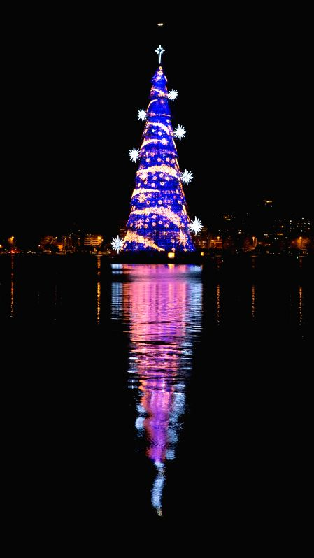 Rio de Janeiro: A giant Christmas tree is seen on the lake of Rodrigo de Freitas in Rio de Janeiro, Brazil, on Dec. 15, 2014. The giant tree, which is 85 meters tall and installed with about 3.1 ...